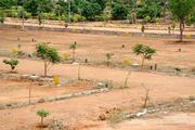 Plots for sale in Rs.160/-Sqft. in chennai