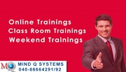 Mind Q Systems - Online Training
