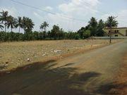 Plot Sale in Kumbakonam