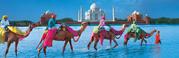 India Holiday Travel