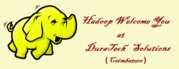 Bigdata and Hadoop Development Training