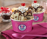 Baskin Robbins Franchise Business Opportunity at your location