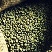 Green Coffee Bean Extract Manufacturers