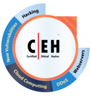 ceh training and certification