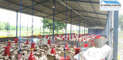 POULTRY FARM CONSTRUCTION