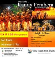 Kandy Perahera 2019 with Scenic Tours Sri Lanka