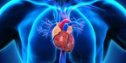 Cardiologist | Top10 Neurologists in Chennai | Neurologist in Chennai