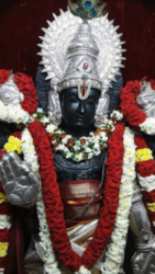 Padmavathi Travels - Tirupati packages