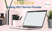 SEO Company in Salem - SEO Force