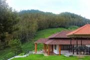 Villas and plots for sale in kotagiri