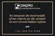 India Market Entry – Zingpro