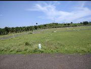 Land For Sale In Low Budget Plots