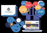 Wordpress Development Company in Coimbatore - WebLite