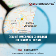 Top Immigration Consultants in Chennai – Novus Immigration Chennai