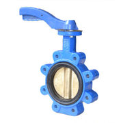 Lug butterfly valve manufacturer in India